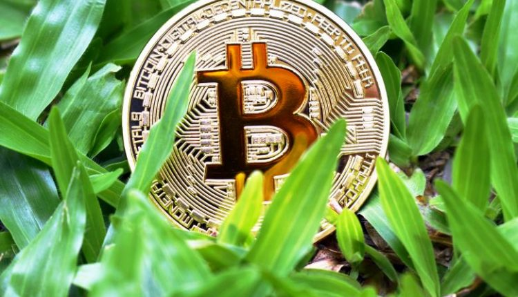 Cryptocurrency as a Financial